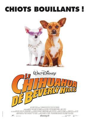 Affiche Le Chihuahua de Beverly Hills