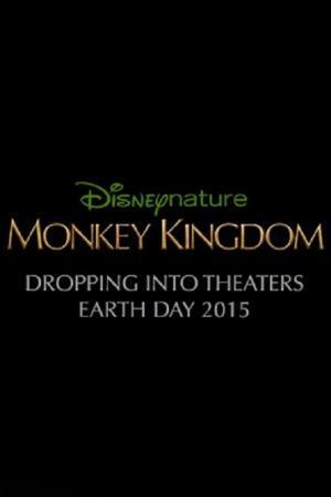Affiche Le Royaume des singes