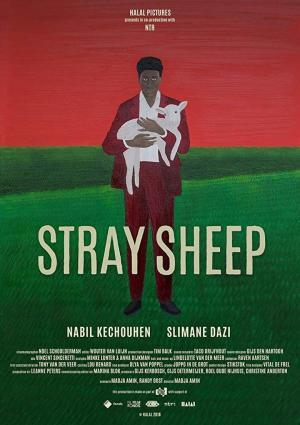 Affiche Stray Sheep