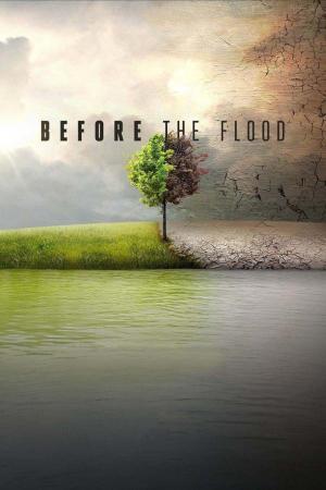 Affiche Avant le déluge