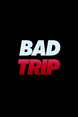 Affiche Bad Trip
