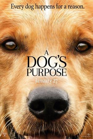 Affiche Mes vies de chien
