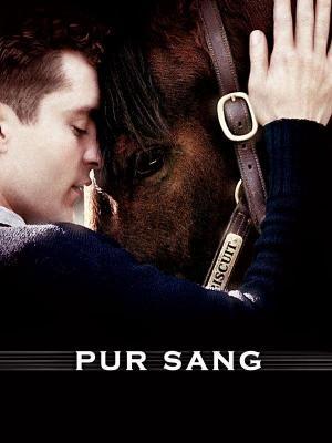 Affiche Pur Sang, la légende de Seabiscuit