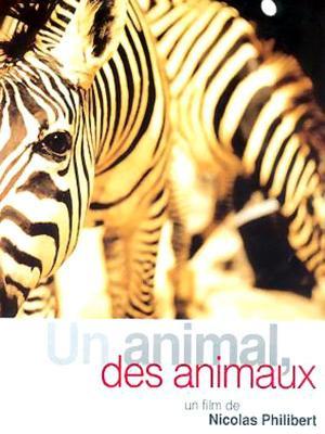 affiche Un animal, des animaux