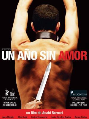 affiche Un Año sin amor