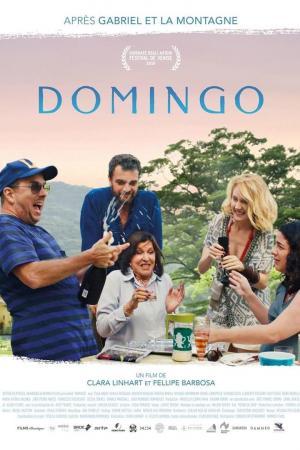 affiche Domingo