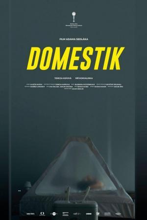 affiche Domestik