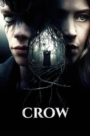 affiche Crow