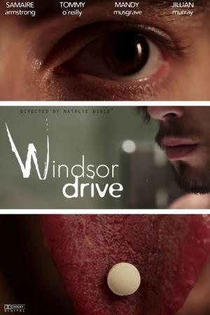 affiche Windsor Drive
