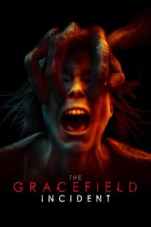 affiche The Gracefield Incident
