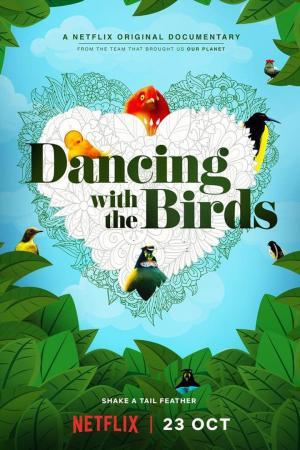 affiche La danse des oiseaux