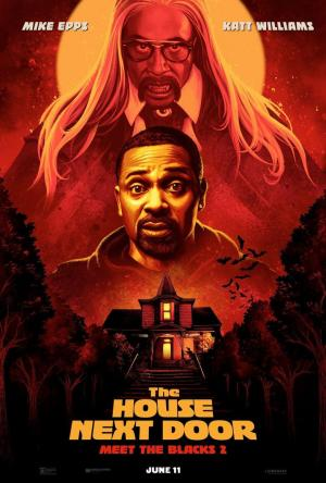 affiche The House Next Door: Meet the Blacks 2