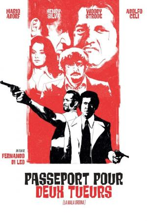 affiche Passeport pour deux tueurs