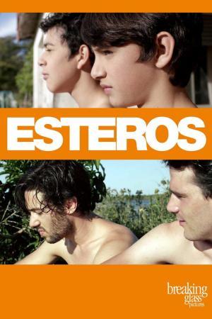 affiche Esteros