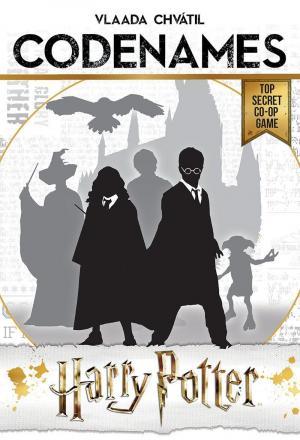 affiche Codenames: Harry Potter