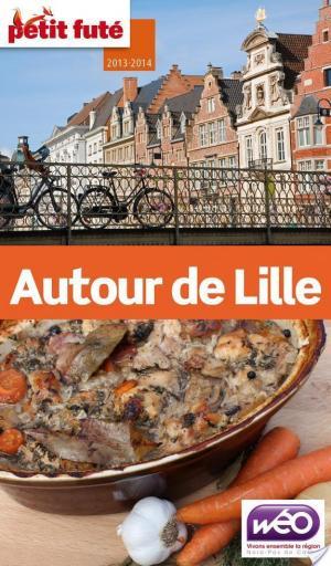 Affiche Autour de Lille 2013-2014 Petit Futé (avec cartes, photos + avis des lecteurs)