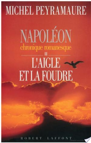 Affiche Napoléon, tome 2 : L'aigle et la foudre