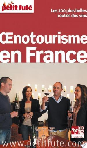 Affiche Guide de l'oenotourisme en France 2014 Petit Futé (avec cartes, photos + avis des lecteurs)