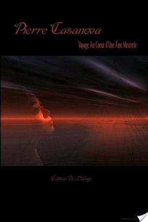 Affiche Voyage au Coeur d'une me Meurtrie