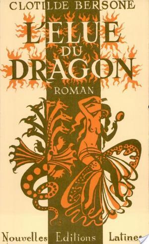Affiche L'élue du dragon