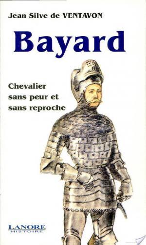 Affiche Bayard, chevalier sans peur et sans reproche
