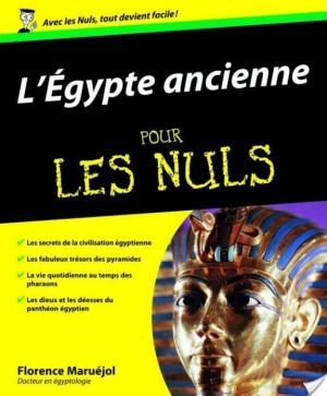 Affiche L'Egypte Ancienne Pour les Nuls