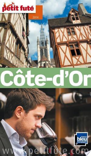 Affiche Côte d'Or 2014 Petit Futé (avec cartes, photos + avis des lecteurs)