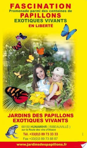 Affiche Alsace 2012