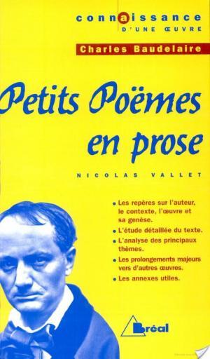 Affiche Petits Poèmes en prose - C. Baudelaire