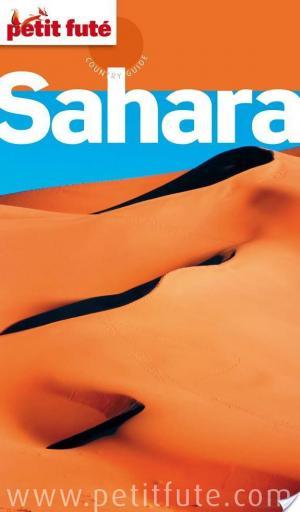Affiche Petit Futé Sahara