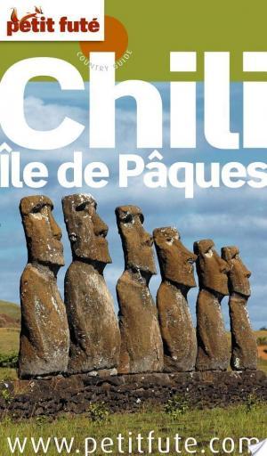 Affiche Chili - Ile de Paques 2010 Petit Fute
