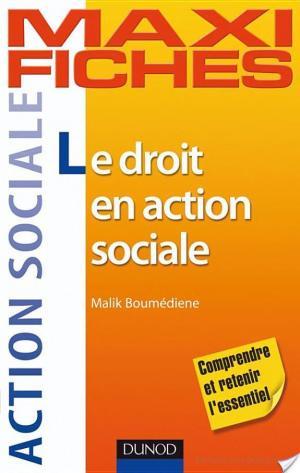 Affiche Maxi-fiches - Le droit en action sociale