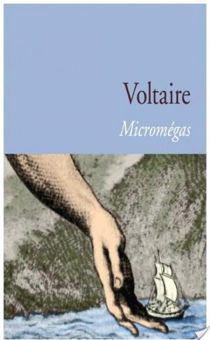 Affiche Micromégas