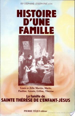 Affiche Histoire d'une famille