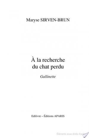 Affiche A la recherche du chat perdu Gallinette