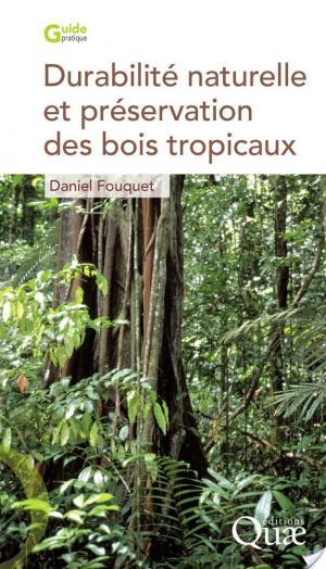 Affiche Durabilité naturelle et préservation des bois tropicaux