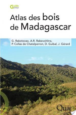 Affiche Atlas des bois de Madagascar