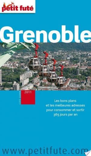 Affiche Grenoble 2011