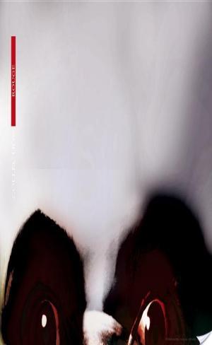 Affiche Intégrale - Les verticales