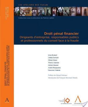 Affiche Droit pénal financier