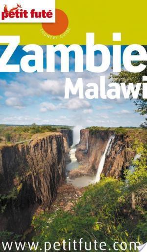Affiche Zambie 2014 Petit Futé (avec cartes, photos + avis des lecteurs)