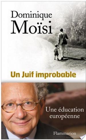 Affiche Un Juif improbable