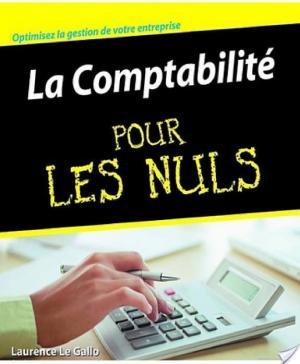 Affiche La Comptabilité Pour les Nuls