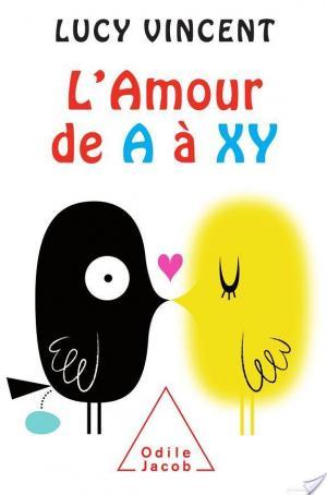 Affiche Amour de A à XY (L')