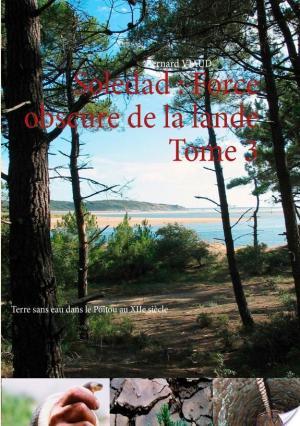 Affiche Soledad