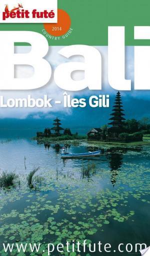 Affiche Bali 2014 Petit Futé (avec cartes, photos + avis des lecteurs)