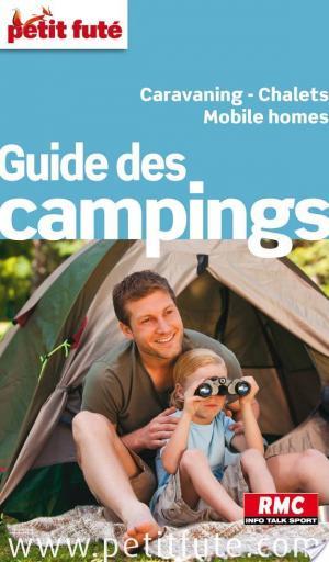 Affiche Guide des campings 2013 Petit Futé (avec photos et avis des lecteurs)