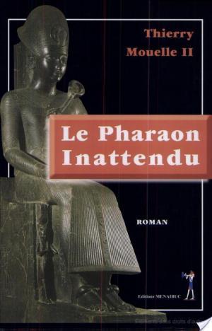 Affiche Le pharaon inattendu