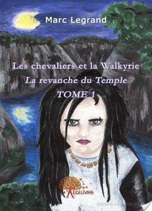 Affiche Les chevaliers et la Walkyrie, tome 1