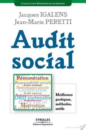 Affiche Audit social